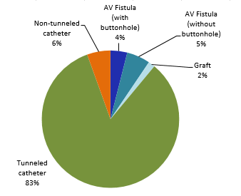 Figure 6 – Breakdown of VARBSIs by Type of Vascular Access, Québec, 2016–2017 (N = 127)