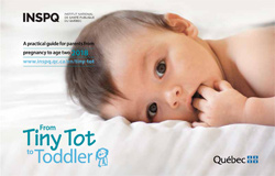 From Tiny Tot To Toddler A Practical Guide For Parents