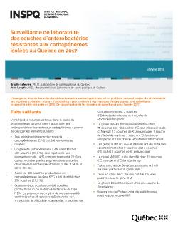 Surveillance de laboratoire des souches d'entérobactéries résistantes aux carbapénèmes isolées au Québec en 2017