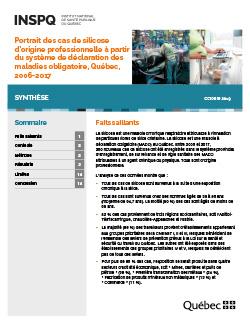 Portrait des cas de silicose d'origine professionnelle à partir du système de déclaration des maladies obligatoire, Québec, 2006-2017