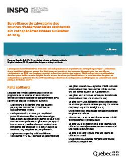Surveillance de laboratoire des souches d'entérobactéries résistantes aux carbapénèmes isolées au Québec en 2019