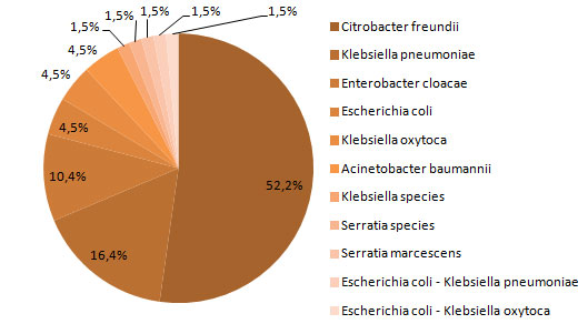 Figure 1 – Categories of Isolated Microorganisms for all Cases (n = 67) and for Deaths at 30 days (N = 8), Québec, 2014-2015